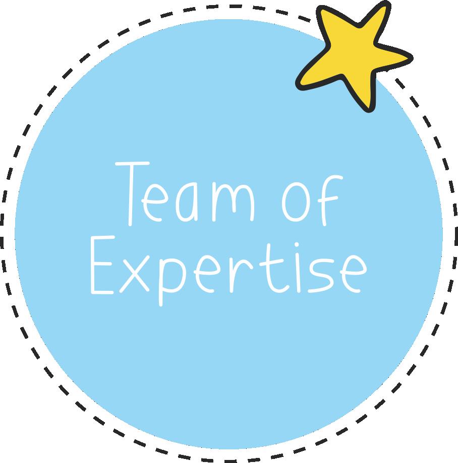 teamofexpertise